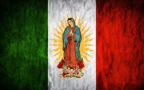 Картинка rose, Mexico, flowers, sun, flag, Madonna, Maria, Regina Mundi, Saint Mary, Virgen de Guadalupe
