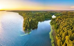Обои лес, озеро, панорама, Литва, Lithuania, Kaunas Reservoir, Kaunas County, Mergakalnis, Каунасское водохранилище