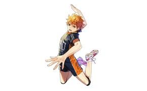 Картинка движение, белый фон, парень, Волейбол, Haikyuu, Хината Сё