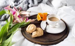 Картинка кофе, чашка, постель, тюльпаны, flowers, romantic, coffee cup, круассаны, croissant, breakfast