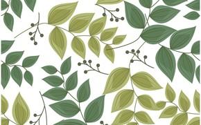 Картинка белый, листья, фон, узор