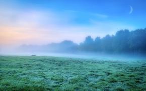 Картинка иней, поле, лес, трава, облака, деревья, туман, синева, луна, утро, пар, дымка