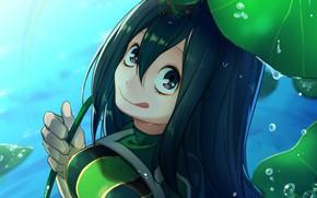 Картинка лист, озеро, лягушка, My Hero Academia, Boku No Hero Academia, Моя геройская акадеимя, Тсуя Асуи