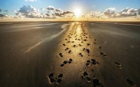Картинка песок, следы, берег