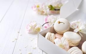 Картинка white, pink, flowers, french, macaron, pastel, макаруны