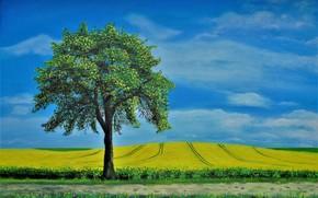 Картинка поле, пейзаж, дерево, картина