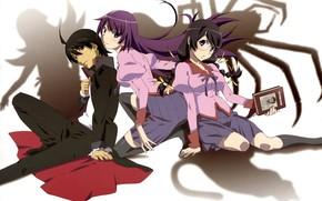 Картинка девушки, аниме, арт, парень, Bakemonogatari