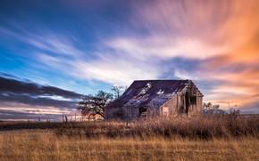 Картинка поле, природа, дом