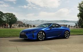 Картинка трава, Lexus, кабриолет, мягкий верх, 2021, LC 500 Convertible