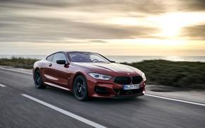 Картинка побережье, растительность, купе, BMW, Coupe, 2018, 8-Series, тёмно-оранжевый, M850i xDrive, 8er, G15