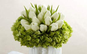 Картинка зелень, букет, тюльпаны
