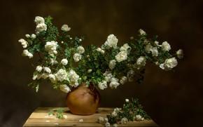Картинка ветки, доски, шиповник, ваза, цветки, Татьяна Феденкова