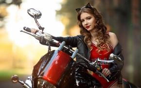 Картинка девушка, мотоцикл, шатенка