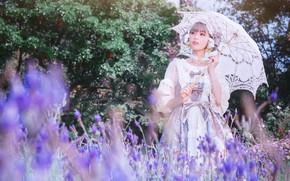 Картинка лето, девушка, свет, цветы, природа, зонт, сад, платье, наряд, прогулка, азиатка, клумба, фотосессия
