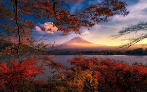 Картинка осень, пейзаж, закат, ветки, природа, гора, красота