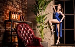 Картинка девушка, секси, поза, кресло, фигура, платье, Тарас Таранда