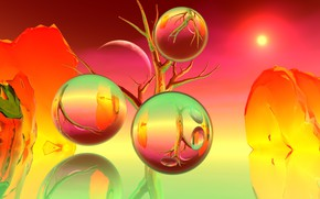 Картинка ветки, отражение, фон, шары