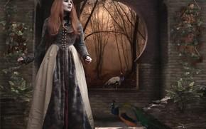 Картинка девушка, птицы, павлины, фотоарт