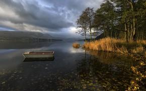 Картинка Lake District, Ullswater, Pooley Bridge, Autumnal Light
