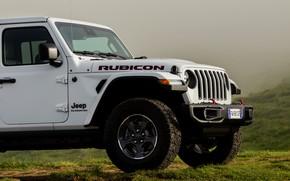Картинка белый, внедорожник, пикап, Gladiator, 4x4, передняя часть, Jeep, Rubicon, 2019