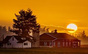 Картинка поле, небо, солнце, деревья, закат, дома