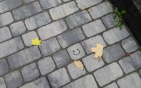 Картинка брусчатка, смайлик, осенние листья