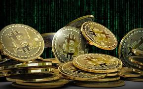 Картинка сеть, монеты, биткоин