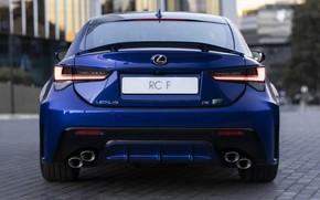 Картинка фары, Lexus, вид сзади, RC F, 2019