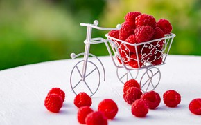 Картинка ягоды, малина, Велосипед