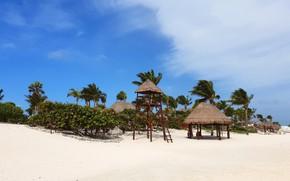 Картинка песок, пляж, пальмы, океан, отпуск, экзотика, beach, Мexico