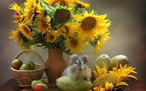 Картинка цветы, морская свинка, овощи