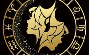 Картинка круг, близнецы, знак зодиака