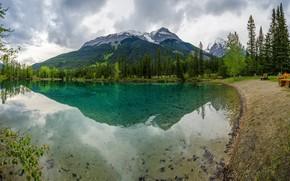 Картинка лес, облака, деревья, горы, природа, озеро, скамейки