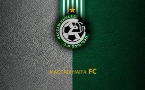 Картинка wallpaper, sport, logo, football, Maccabi Haifa