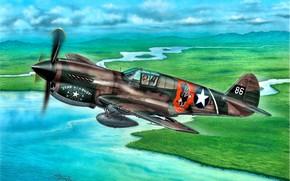 Картинка истребитель, истребитель-бомбардировщик, P-40 Warhawk, Подвесной топливный бак, P-40E, Сurtiss