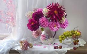 Картинка цветы, ягоды, виноград, гроздь, кувшин, натюрморт, занавеска, салфетка, гортензия, вазочка, георгины, Валентина Колова