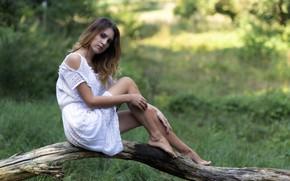 Картинка взгляд, девушка, модель, волосы, платье, Chiara, красивые ножки