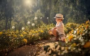 Картинка лето, цветы, мальчик