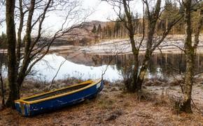 Картинка осень, река, лодка