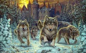 Картинка рисунок, красота, волки