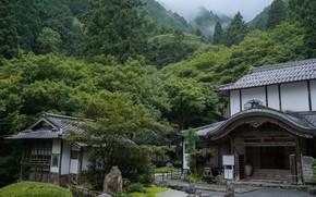 Картинка Природа, Горы, Япония, Лес, Сад, Храм