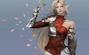 Картинка доспехи, лепестки, блондинка, эльфийка, серый фон, длинные волосы, art, ремни, железная рука, наплечник, Jihyun Heo