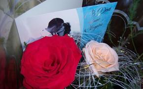 Картинка розы, букет, открытка, Meduzanol ©
