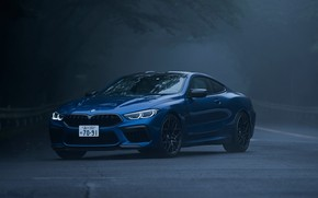 Картинка туман, купе, BMW, Coupe, 2020, BMW M8, двухдверное, M8, M8 Competition Coupe, M8 Coupe, F92