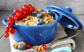 Картинка ягоды, завтрак, черника, орехи, смородина, овсянка, Iryna Melnyk