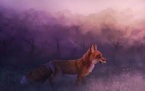 Картинка лес, лиса, by CreeperMan0508