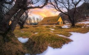 Картинка Iceland, East, Fagurhólsmýri