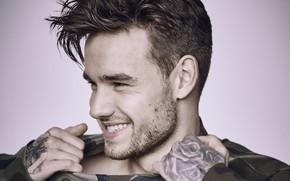 Картинка взгляд, поза, улыбка, мужчина, Liam Payne