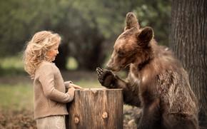Картинка природа, животное, пень, хищник, медведь, девочка, кудри, ребёнок, локоны, Марианна Смолина