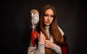Картинка взгляд, девушка, лицо, сова, птица, волосы, портрет, руки, макияж, сипуха, тёмный фон, Григорий Лифин